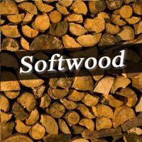 Softwood logs Devon